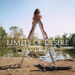 Small Black_Limits of Desire