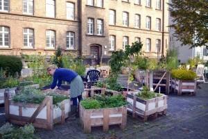 Urban Gardening: Ermekeilgarten Bonn 2014 / Foto: N. Breidentein / © LVR-Industriemuseum