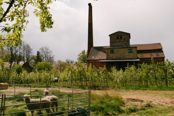 Birnengarten Ribbeck