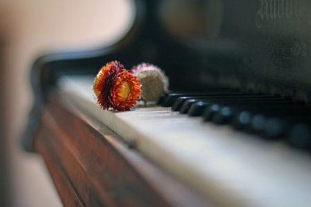 Sehnsucht Klavier Blume
