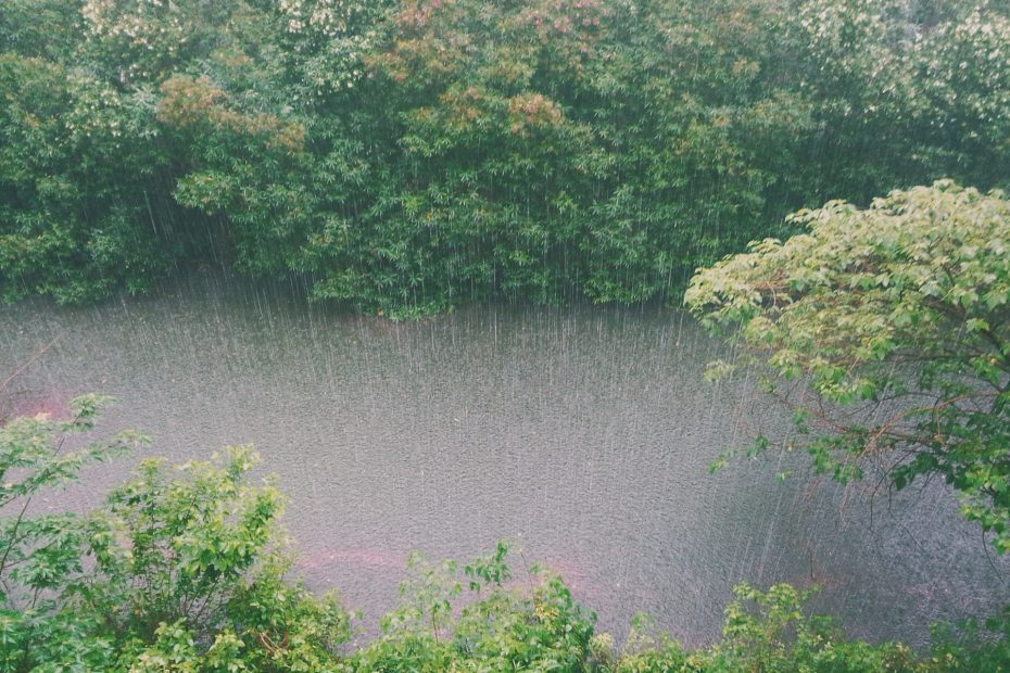 Frühlingsstürme